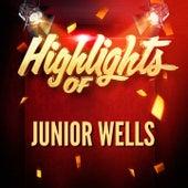 Highlights of Junior Wells von Various Artists