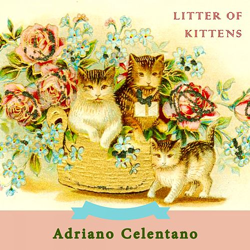 Litter Of Kittens de Adriano Celentano