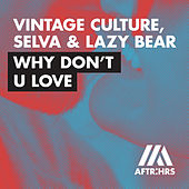 Why Don't U Love (Radio Edit) de Lazy Bear