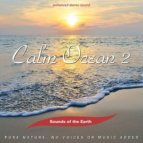 Play & Download Calm Ocean 2 by Sounds Of The Earth | Napster