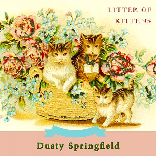 Litter Of Kittens by Dusty Springfield