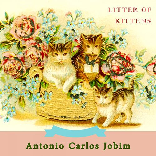 Litter Of Kittens van Antônio Carlos Jobim (Tom Jobim)