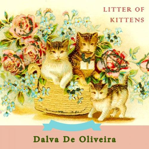 Litter Of Kittens by Dalva de Oliveira