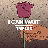 Play & Download I Can Wait by Trip Lee | Napster