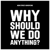 Play & Download Why Should We Do Anything? by New Street Adventure | Napster