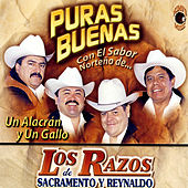 Un Alacran y Un Gallo by Los Razos