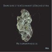 Play & Download Metamorphosis by BamesreiterSchwartzOrchestra | Napster