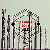 Play & Download You Know the Drill, Vol. 17 by Various Artists | Napster