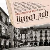 Més Raons de Pes el Tribut a Umpah-pah by Various Artists
