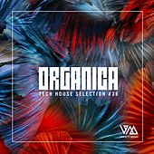 Organica #36 by Various Artists