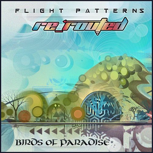 Play & Download Flight Patterns (Re-Routed) by The Birds Of Paradise | Napster
