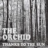 Thanks to the Sun by The Orchid