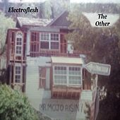 Play & Download The Other by Electroflesh | Napster