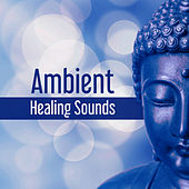 Ambient Healing Sounds – Tibetan Sounds, Buddha Meditation, Sounds to Rest, Clear Mind by Relaxation Meditation Yoga Music