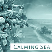 Play & Download Calming Sea – Spa Music, Deep Sleep, Nature Sounds for Relaxation, Water Sounds, Healing Music, Gentle Waves by Wellness | Napster