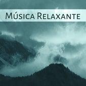 Música Relaxante - Alívio de Estresse, Sons da Natureza, Música Calma by Musica Para Dormir Profundamente