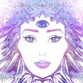 Sense of Life by Nava