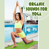 Organic Sounds for Yoga – Deep Meditation, Yoga Music, Pilates Background Music, Nature Sounds, More Relaxation by Organic Sound