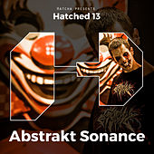 Hatched 13 by Various Artists