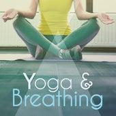 Play & Download Yoga & Breathing – Peaceful Nature Sleep, Yoga Meditation, New Age, Pilates, Meditation, Yoga Background Music by Yoga Tribe | Napster
