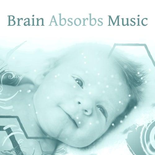 Brain Absorbs Music – Songs for Babies, Growing Brain, Einstein Effect, Educational Music, Development Child, Classical Noise for Listening, Bach, Mozart de Einstein Effect Collection