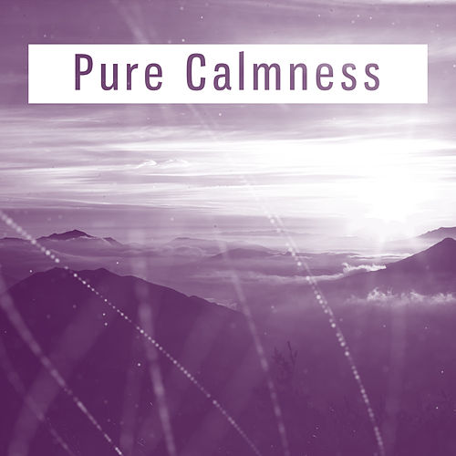 Play & Download Pure Calmness – Soothing Sounds of Nature, Relaxing Music, New Age, Ambient Relax, Instrumental Music by Calming Sounds | Napster