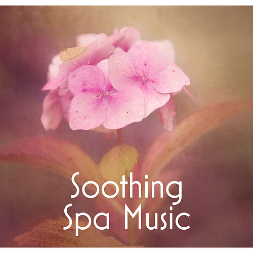 Play & Download Soothing Spa Music – Nature Sounds for Spa, Massage, Music for Wellness Hotel, Instrumental Songs for Pure Relaxation by Spa Music Consort | Napster