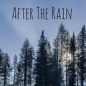 After the Rain by Nature Sounds