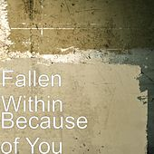 Play & Download Because of You by The Fallen Within | Napster