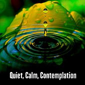 Play & Download Quiet, Calm, Contemplation by Meditation Music Zone | Napster