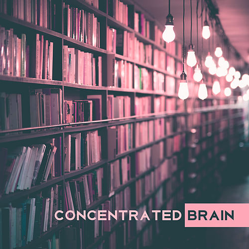 Play & Download Concentrated Brain – Classical Music for Study, Deep Focus, Better Concentration, Handel, Liszt, Haydn by Classical Study Music Ensemble | Napster