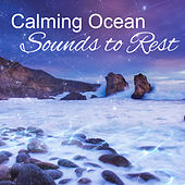 Play & Download Calming Ocean Sounds to Rest – Soothing Water Waves, Waterfall, New Age Calmness, Stress Relief by New Age | Napster