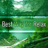 Play & Download Best Way for Relax – Calming Sounds of Nature, Helpful for Calm Down and Rest, Healing Nature by Sounds of Nature Relaxation | Napster