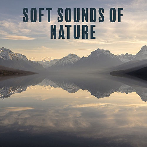 Play & Download Soft Sounds of Nature – Calming Sounds, Nature Relaxation, New Age, Rest Music, Stress Free by Relaxing Sounds of Nature | Napster