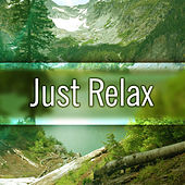 Play & Download Just Relax – Ultimate Relaxing Music, New Age, Soft Sounds, Instrumental Music, Stress Relief & Rest by Relaxing Piano Music Consort | Napster