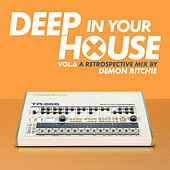 Deep in Your House, Vol. 6 - A Retrospective Mix by Demon Ritchie by Various Artists
