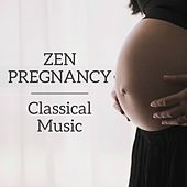 Play & Download Zen Pregnancy Classical Music by Various Artists | Napster