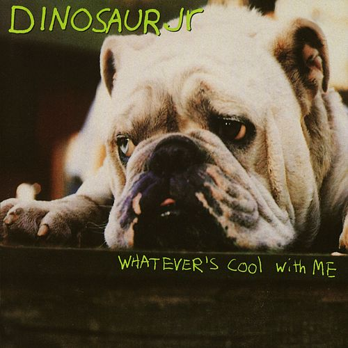 Play & Download Whatever's Cool With Me by Dinosaur Jr. | Napster