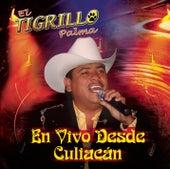 Play & Download En Vivo Desde Culiacán by El Tigrillo Palma | Napster