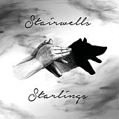 Play & Download Starlings by The Stairwells | Napster