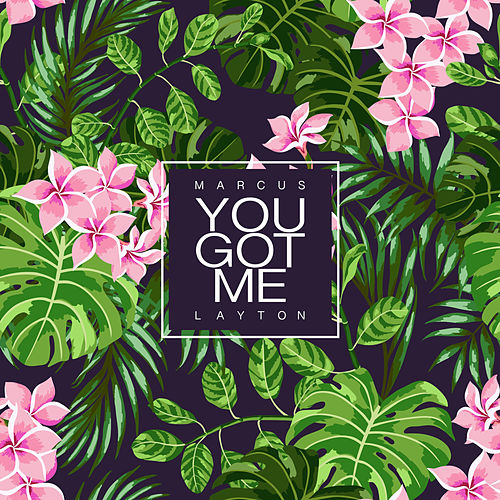 You Got Me by Marcus Layton