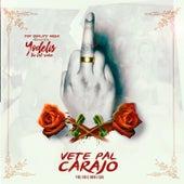 Vete Pal Carajo by Yodelis