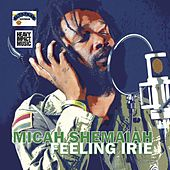 Play & Download Feeling Irie by Micah Shemaiah | Napster