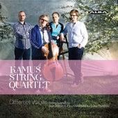 Different Voices: String Quartets Sibelius, Kaipainen & Tiensuu by Kamus Quartet