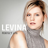 Wildfire & Perfect Life by Levina