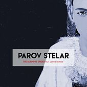 The Burning Spider (feat. Lightnin Hopkins) von Parov Stelar