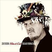 Play & Download Black Cat by Zucchero | Napster