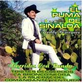 Play & Download Corridos Con Banda by El Puma De Sinaloa   Napster