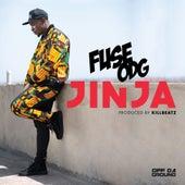 Jinja by Fuse ODG