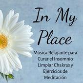 Play & Download In My Place - Música Relajante para Curar el Insomnio Limpiar Chakras y Ejercicios de Meditación con Sonidos Zen New Age Instrumentales by Zen Music Garden | Napster